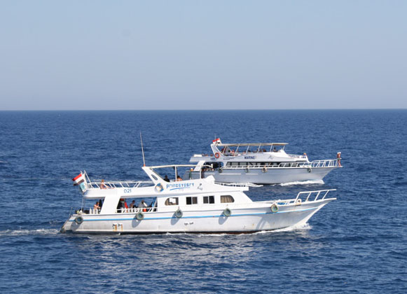 Day Sea Tours in Marsa Alam